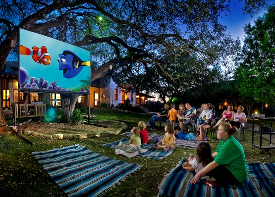 Movies in St.James Park