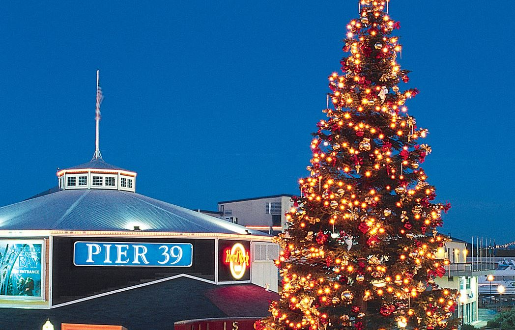 Tree Lighting at Pier 39