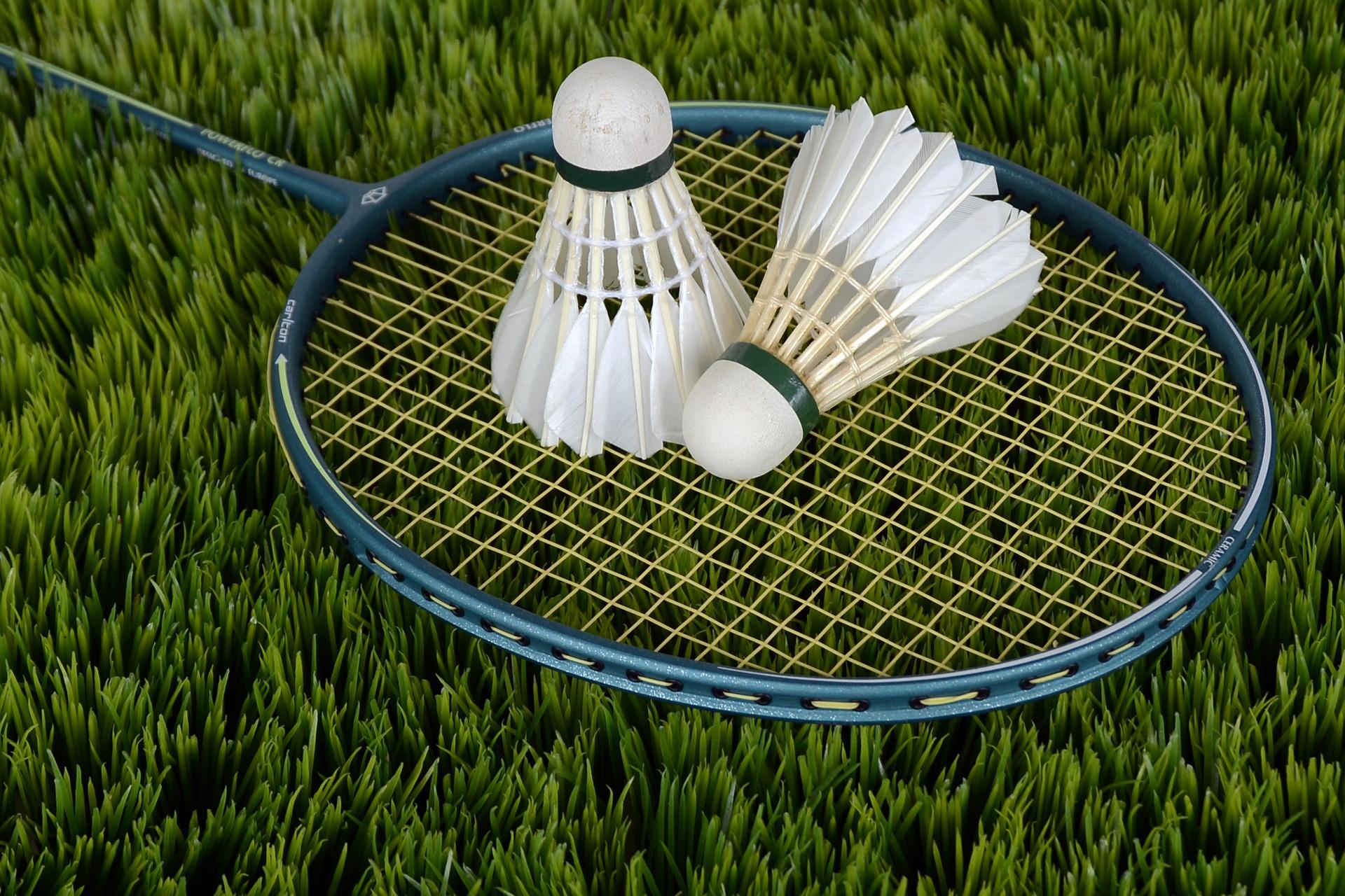 Badminton in the Park