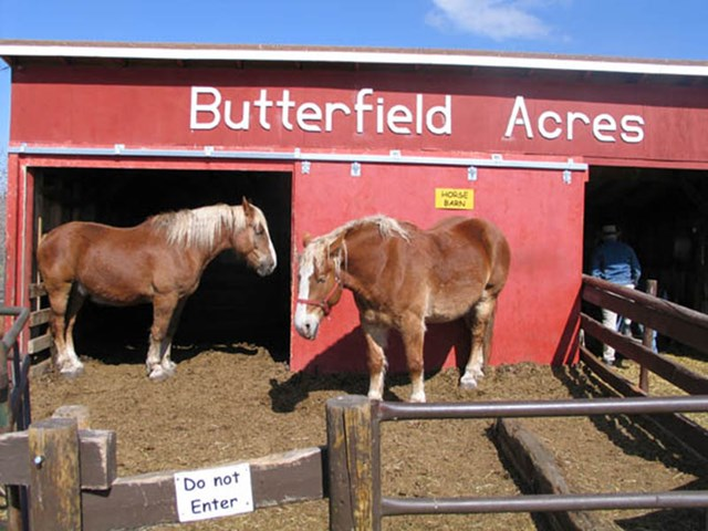 Butterfield Acres Petting Farm Event TBD