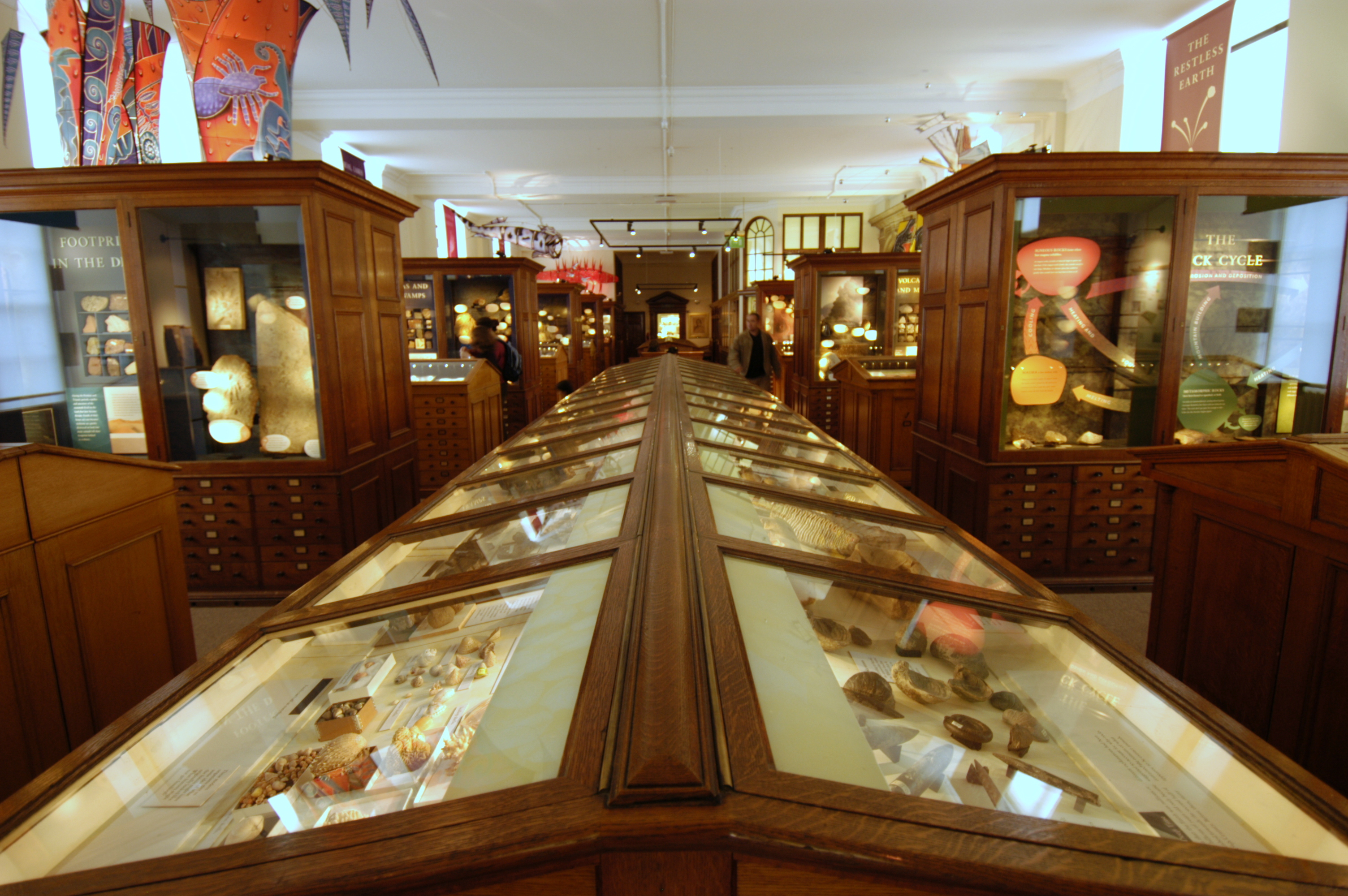 Sedgwick Museum