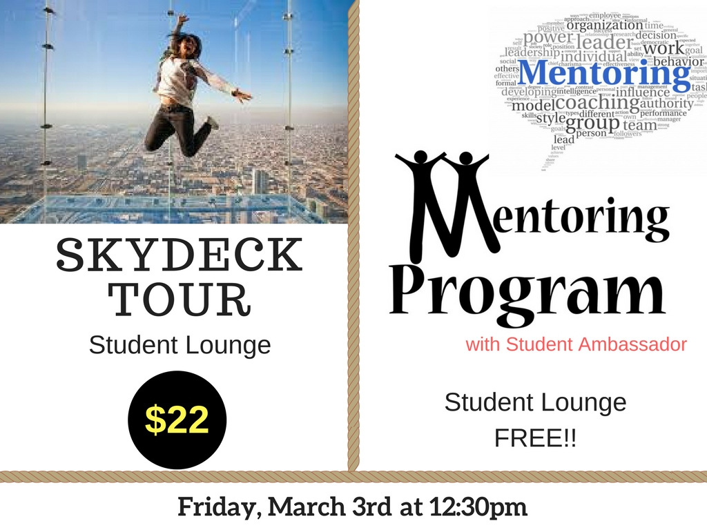 Mentorship//Skydeck Tour